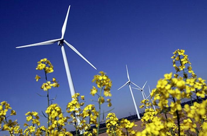 Oekolariet _vedvarende -energi -stor